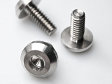 Polished Bolts